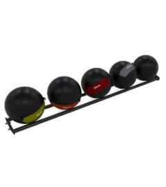 300 Storage Rail 4 Large Medicine Balls 350