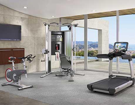 Premium dealer Life Fitness